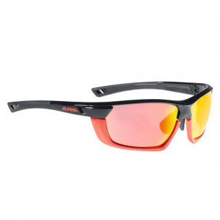 Alpina Tri-Scray Multiframe Radbrille