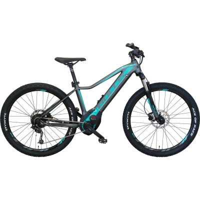 BULLS Aminga Eva 1 CX Elektro Mountainbike
