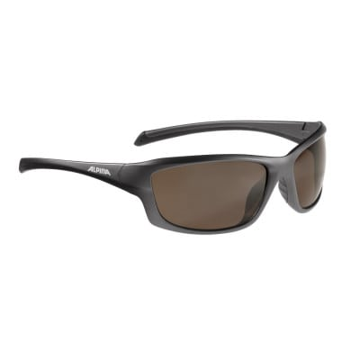Alpina Dyfer Fahrradbrille